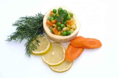 veg food low carb