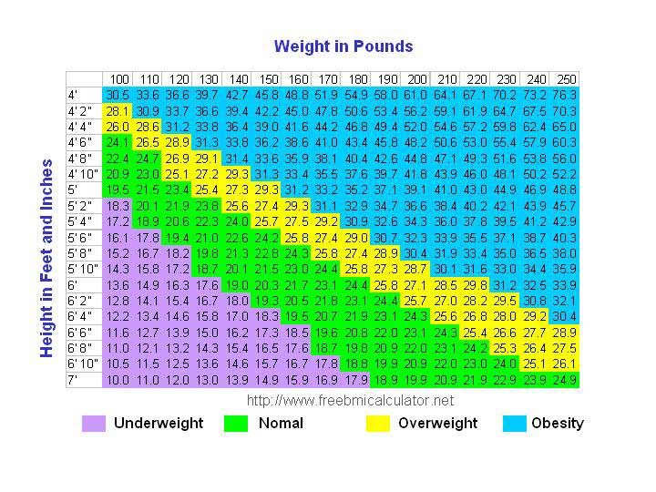 Bmi Chart Know Your Body Mass Index